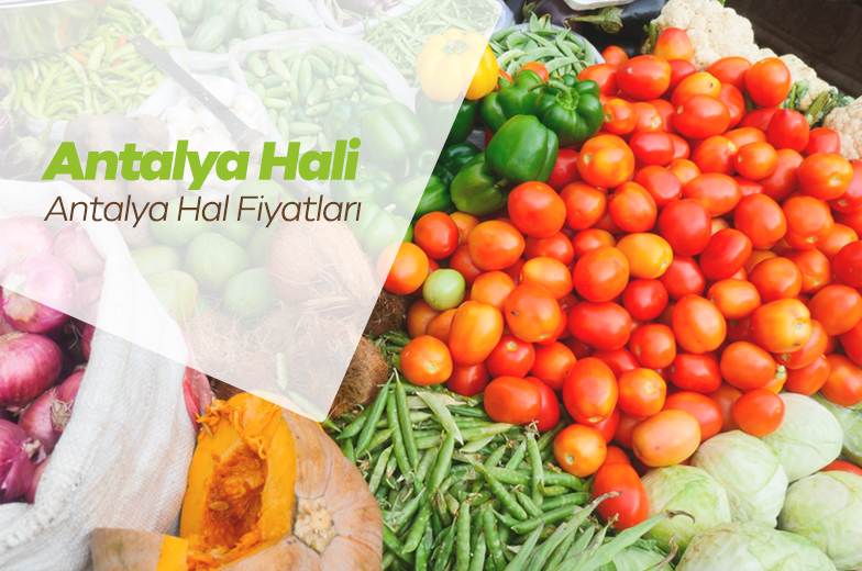 Antalya Hal Fiyatları