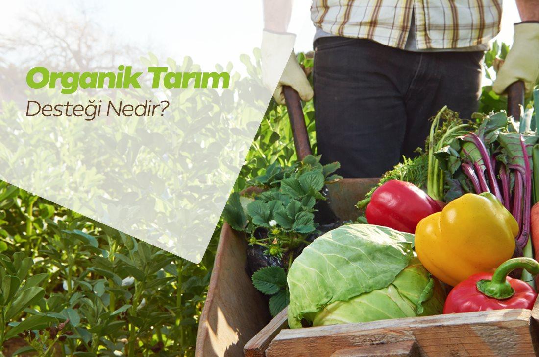 Organik Tarım Desteği Nedir? Organik Tarım Desteği Şartları Nelerdir?