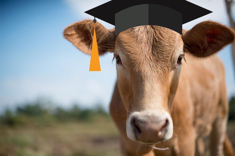 Uygulamalı Çiftçi Okulları 10 İlde Hayata Geçmeye Başlıyor