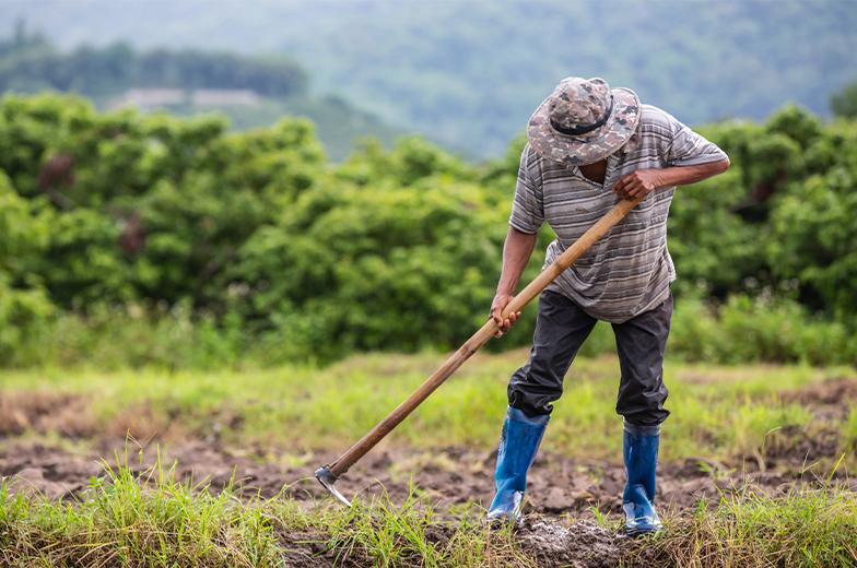 Tarım Üreticilerini Faizsiz ve Düşük Faizli Kredi Şartları Açıklandı